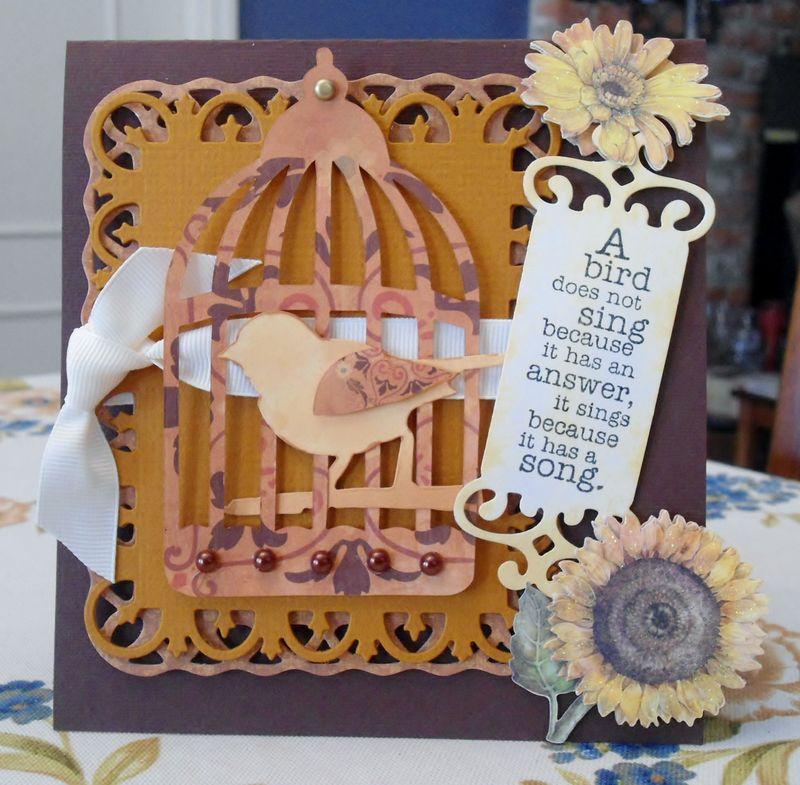 DSCird cage