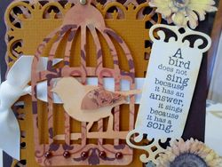 Bird cage closeup